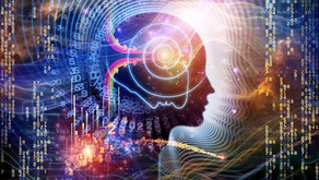 What is MidBrain?