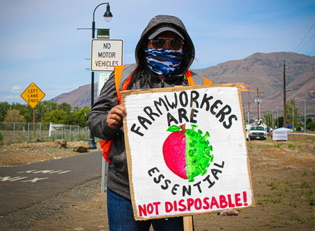 Yakima County Agricultural Workers are Organizing for Health, Rights, Dignity