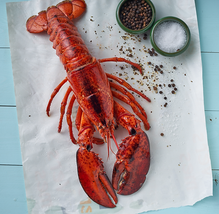 Lobster on the table. Concept photography. For food magazines. Food photography, still life. High end food shots. Conceptiual food photography. See food on ice. Craps. Editorial food photography.