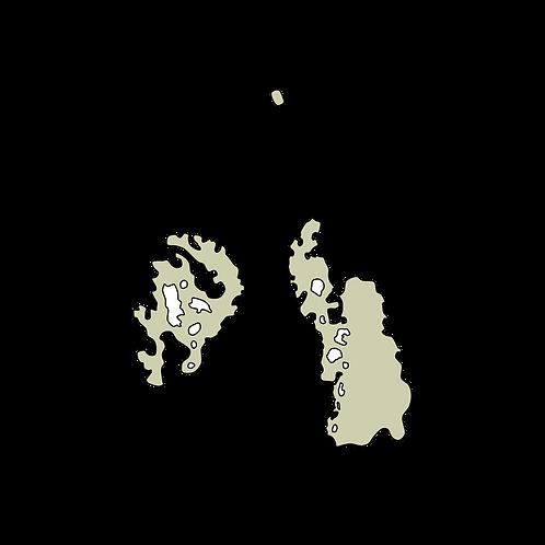 Washington - Chambers Bay