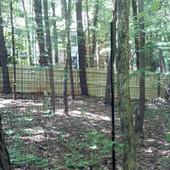 Deer Fence (1).jpg