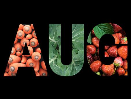 Seizoensgroenten en fruit: augustus