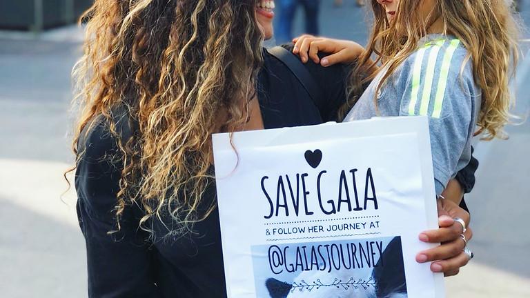 Besuchstag bei Gaia @gaiasjourney