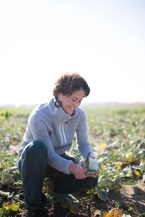 25-Harvesting & Dining in the Field.jpg