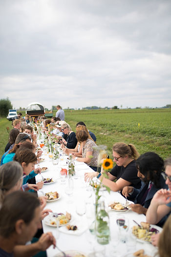 70-Harvesting & Dining in the Field.jpg