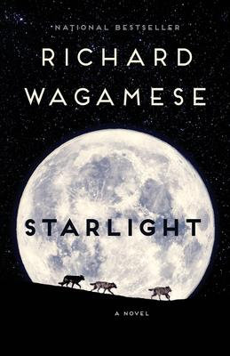 Starlight - a novel: Ages 13 +