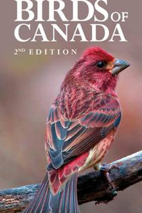 Pocket Birds of Canada 2nd Edition