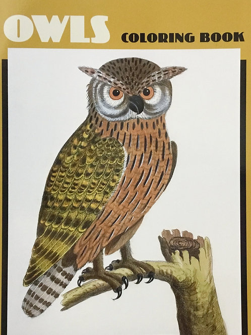 Owls Coloring (Colouring) Book