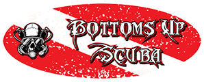 Bottoms-Up-Logo-Banner-Transparent-298x1