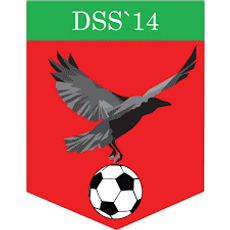 DSS14.png