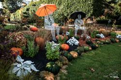 Octobre 2019 au Jardin des Plantes