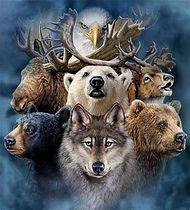 power animals.jpg