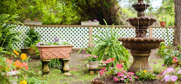 Explore our kitchen gardens