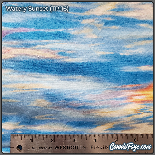 Watery Sunset (TP-16) Olson Cloth Face Mask