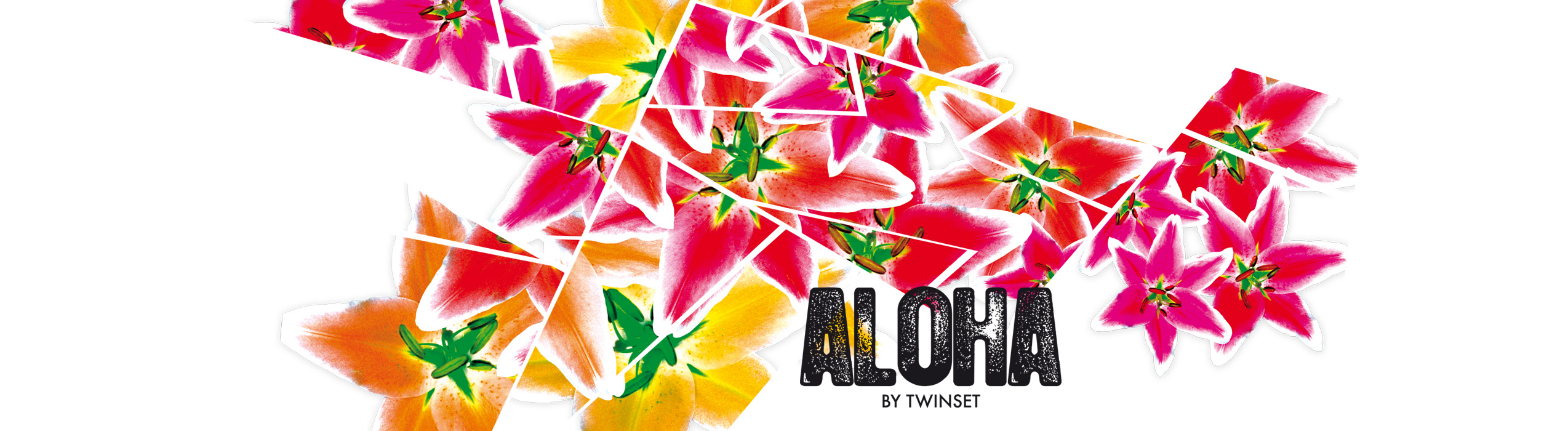 Aloha_artwork_ringel_design©