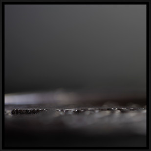 Silence Gold Photography 'Struktura Scanner 100074' 150x150cm