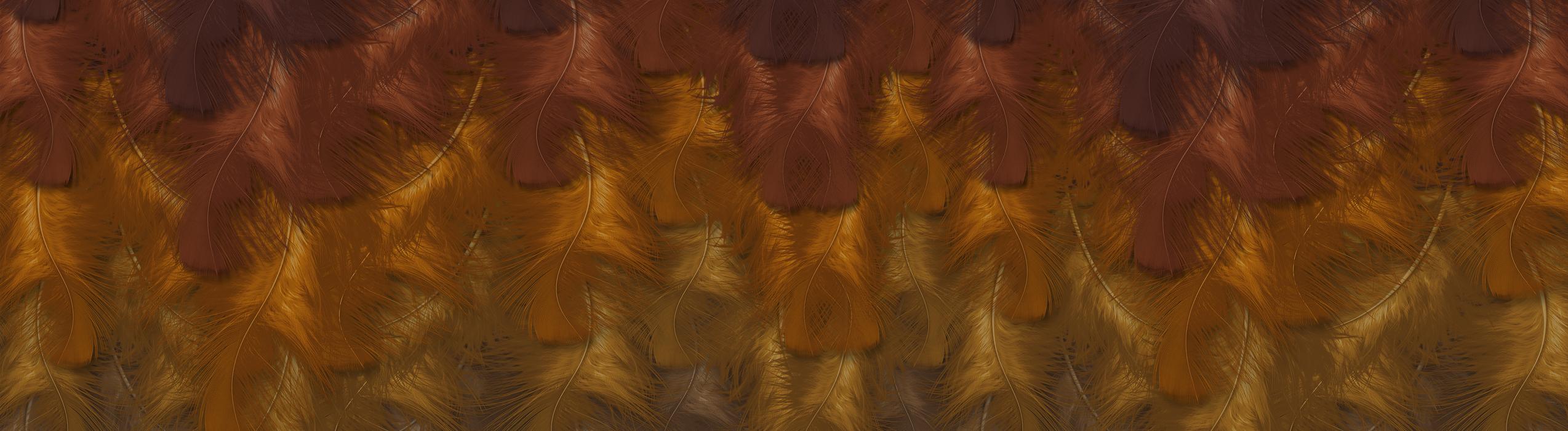 Feathers_artwork_ringel_design©