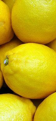 Limón Kilo