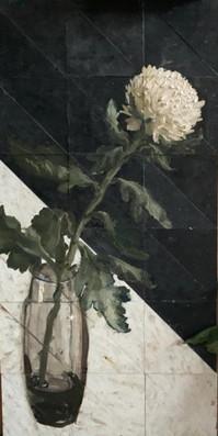"""Still life of a WhiteChrysanthemum"""