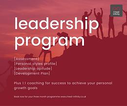 Individual Leadership Development