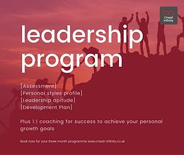 Individual Leadership Development