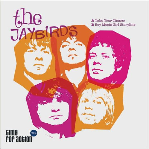 THE JAYBIRDS Take Your Chance 7""