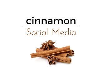 U9 Lions Cinnamon Social Media Team Page