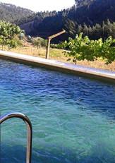 xBrejo-Pool1-450.jpg.pagespeed.ic_.SUut5
