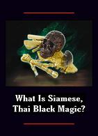 25 Siam Black Magic.png