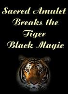 31 Tiger Black Magic.png