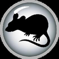 f_16C_Rat Sign.png