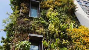 Nachhaltiges Verhalten von Investoren der Immobilienbranche