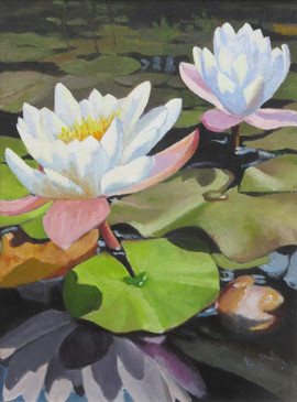 """Water Lilies"" by Ali McQueen. Chosen to be the front cover of the July/August issue of the St Andrews in Focus Magazine"