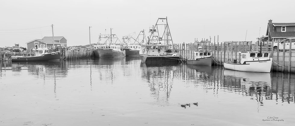Harbourville High Tide WCC_3499.jpg