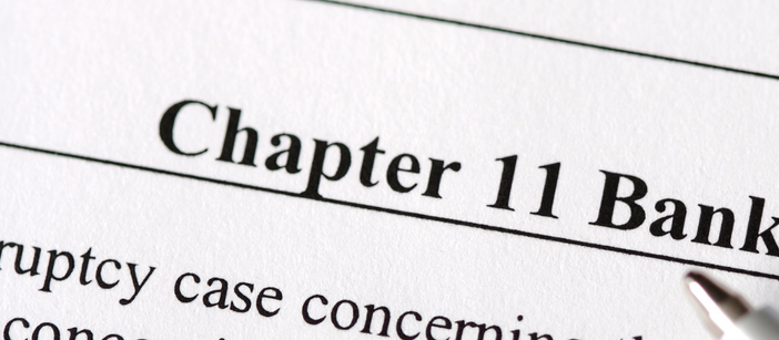 What is Chapter 11?
