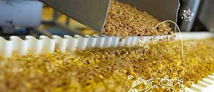 Pioneer-Foods-UK-700x300.jpg