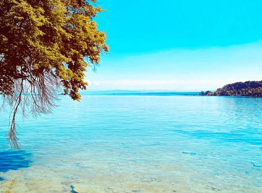 Die Insel Mainau - Eine Perle auf dem schwäbischen Meer