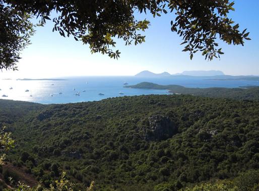 Mediterrane See mit AIDAaura