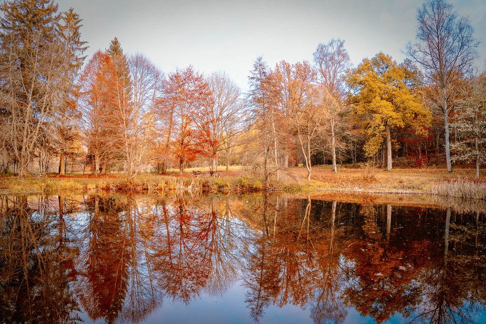 Schätze vor der eigenen Haustüre - Wenn der Herbst in den Naturpark Schönbuch lockt