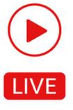 Live Stream under Starum Cup 2021
