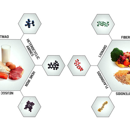 WHAT ARE THE HIGHEST SOURCES OF PROTEIN FOR ME? PLANT OR ANIMAL PROTEIN?