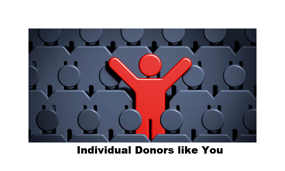 fin2_individualdonor.png