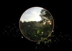 Dawn_Bali_SusanWishart