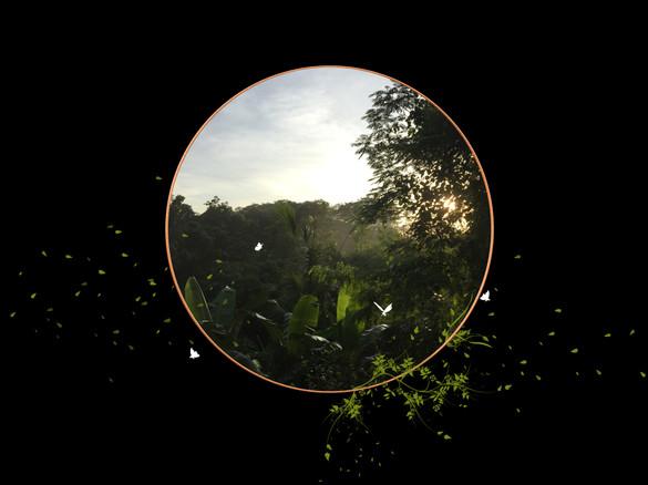 Dawn Series