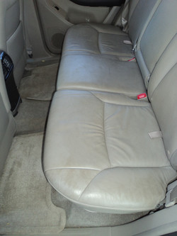 Before Leather and Carpet Clean