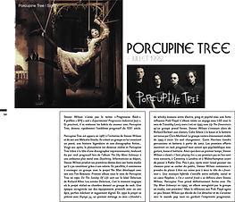 Porcupine 1.jpg