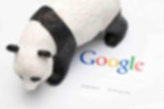 filtre Google Panda