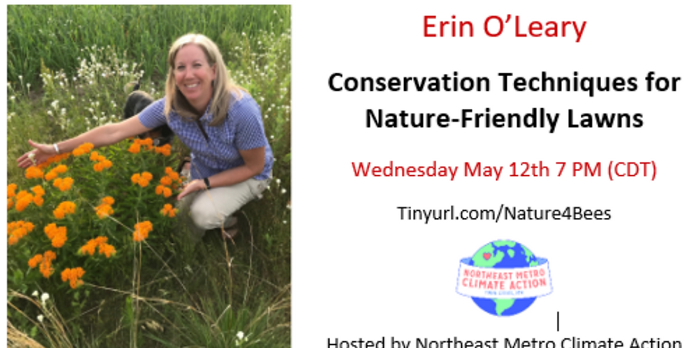 Conservation Techniques for Nature-Friendly Lawns