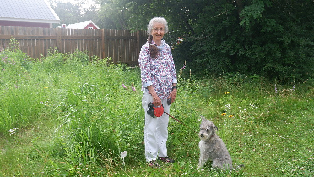 Nancy Doherty: Plant ID Volunteer