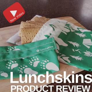 Reusable Lunchskins Bags | Product Review